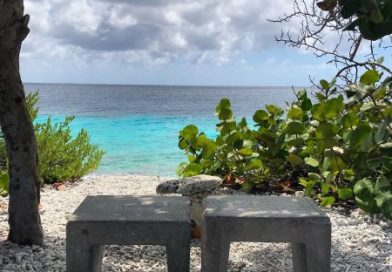 JOURNAL: The Beauty Of Bonaire- Day Trip